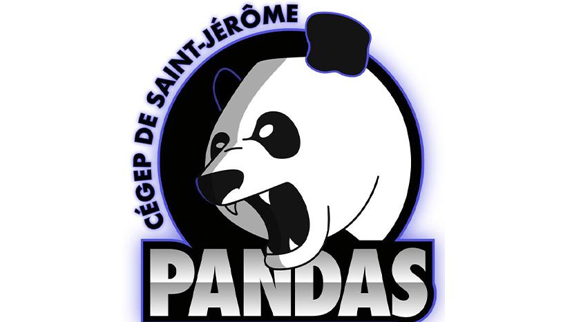 Une finale de championnat pour les Pandas