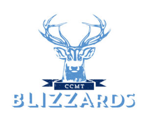 Logo des Blizzards